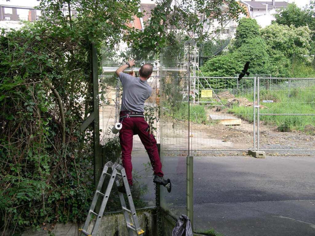 Splitterschutzfolie für den Kölner Zoo